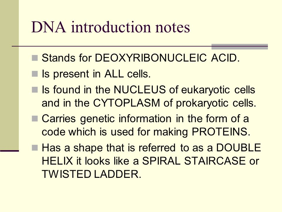 an introduction to the functions of the dna The base sequence of deoxyribonucleic acid (dna) is responsible for carrying  and  in this section, we will discuss the basic structure and function of dna.