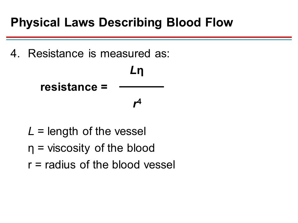 describe the relationship between radius and blood flow rate Activity 1 - effect of blood vessel radius on blood flow ratepdf - download as pdf file (pdf), text file (txt) or read online.