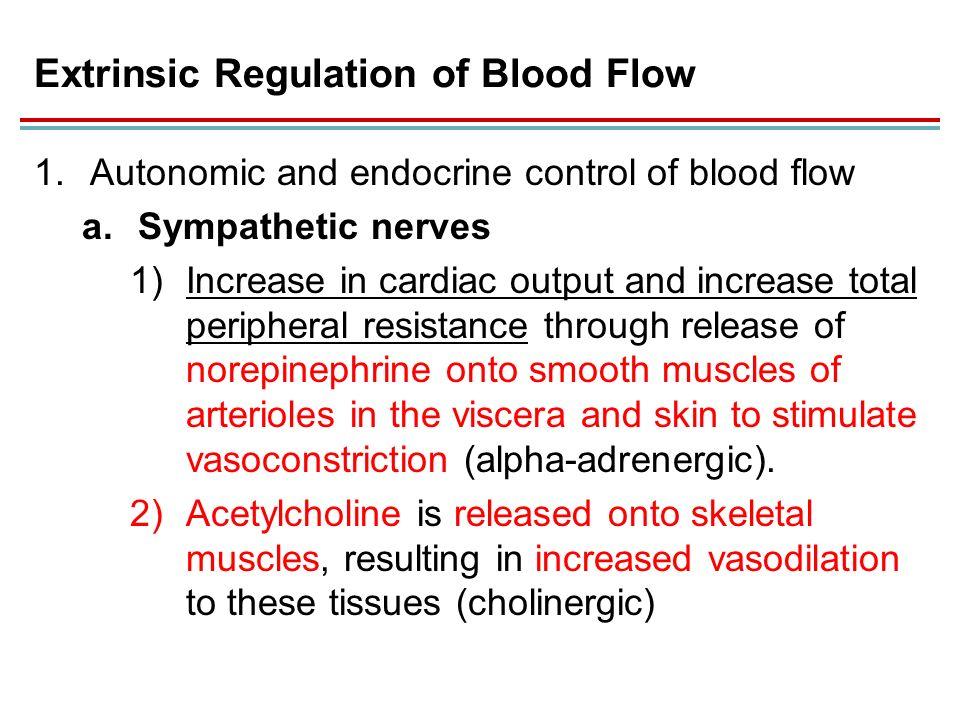 Sympathetic reflex control of blood flow in human ...