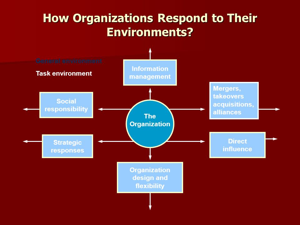 organisations in their environment management essay Essays on environmental management: species invasion, social  management  of the aquatic invasive species elodea canadensis (michx) in lake lötsjön   trust and membership and engagement in different forms of organizations on.