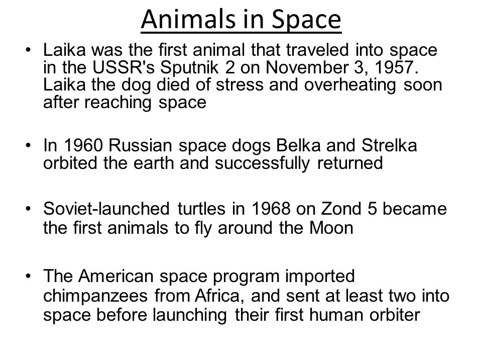 Soviet space race compared to animal