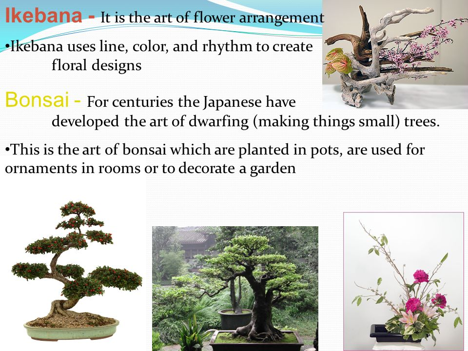 Ikebana - It is the art of flower arrangement