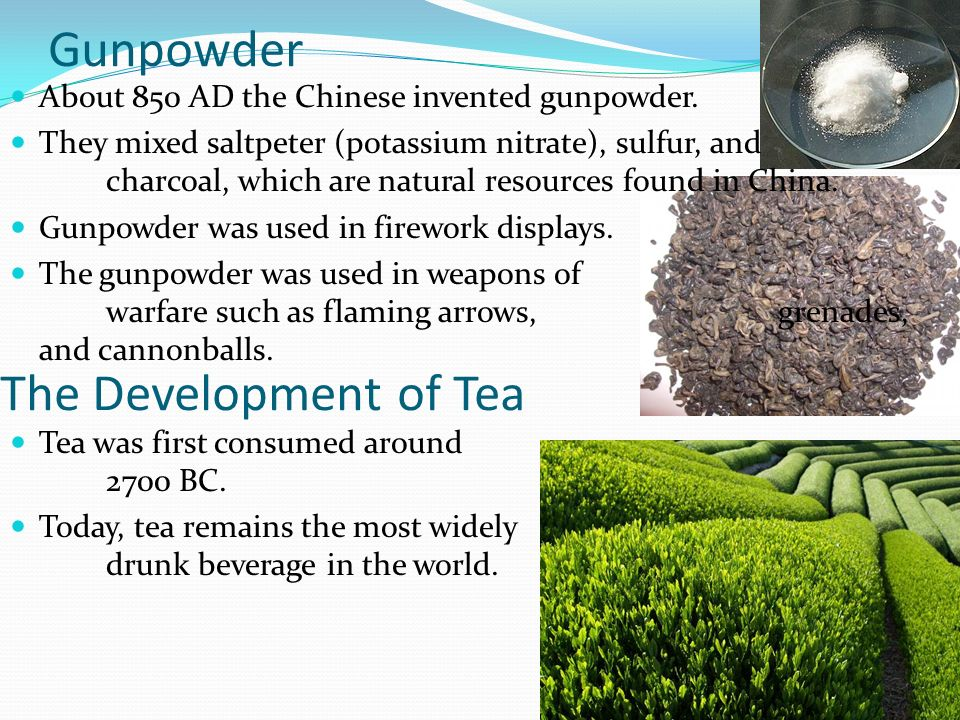 Gunpowder The Development of Tea