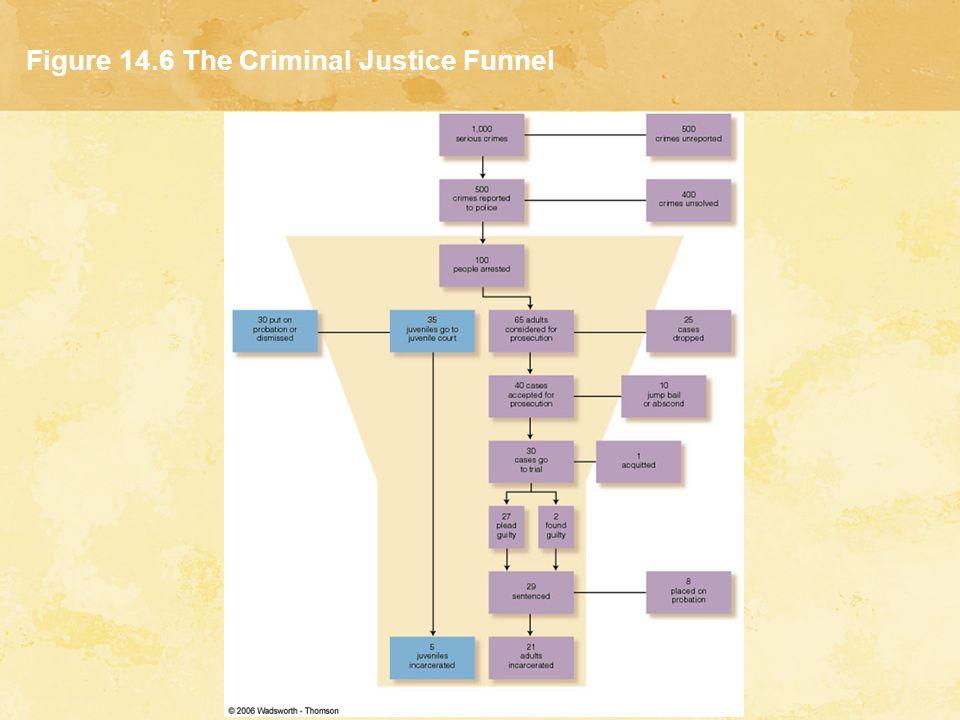 Chapter 14 The Criminal Justice System ppt download