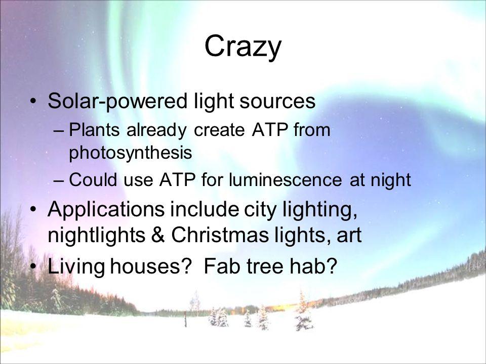 Bioluminescence.