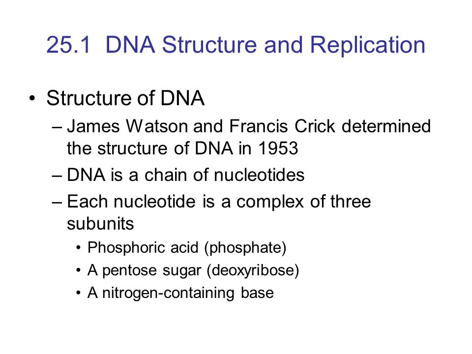 Dna structure and replication worksheet answers