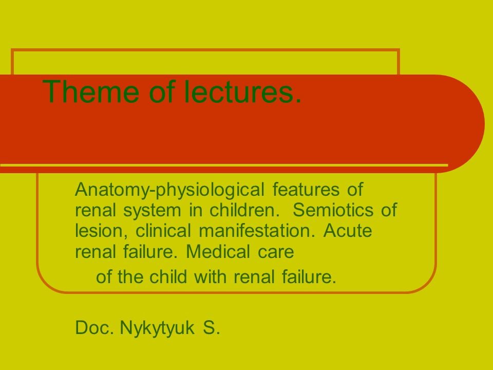 Theme of lectures. Anatomy-physiological features of renal system in ...