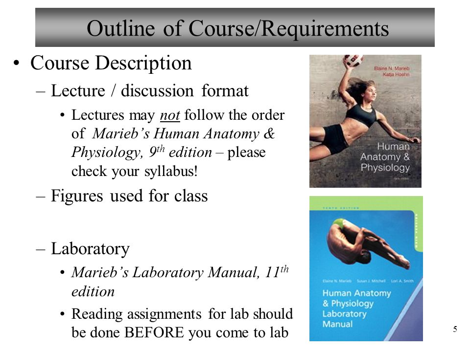 Welcome to Anatomy & Physiology II - ppt download