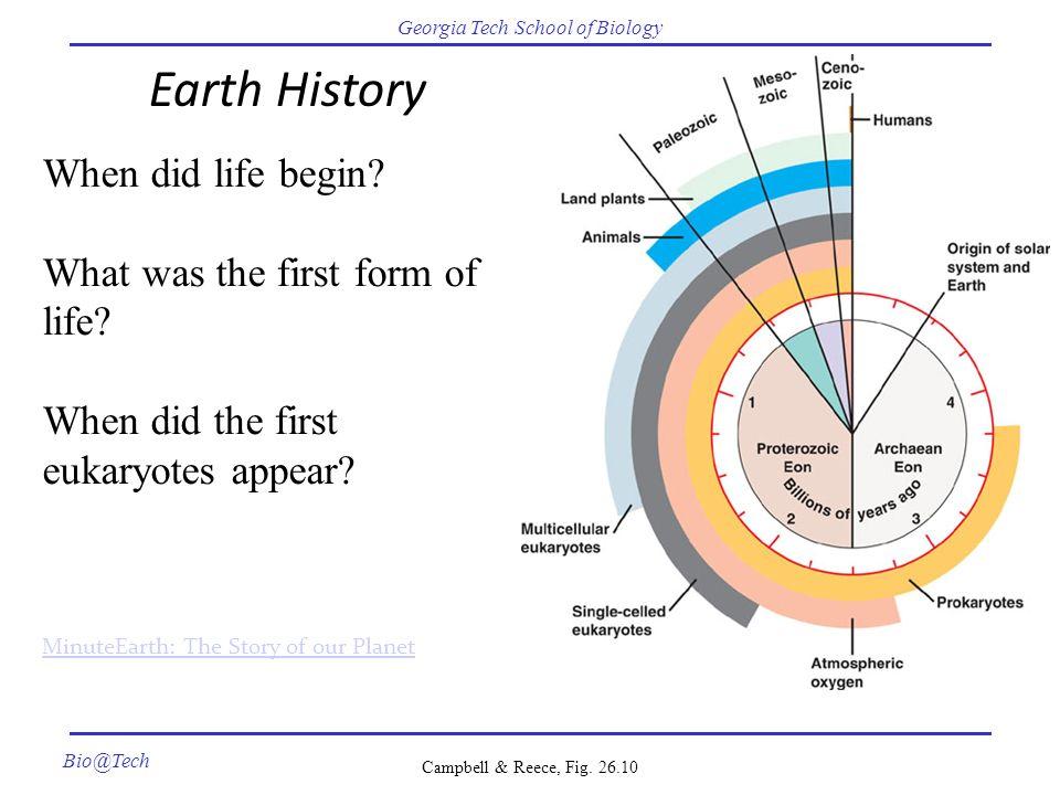pdf emerging dimensions of
