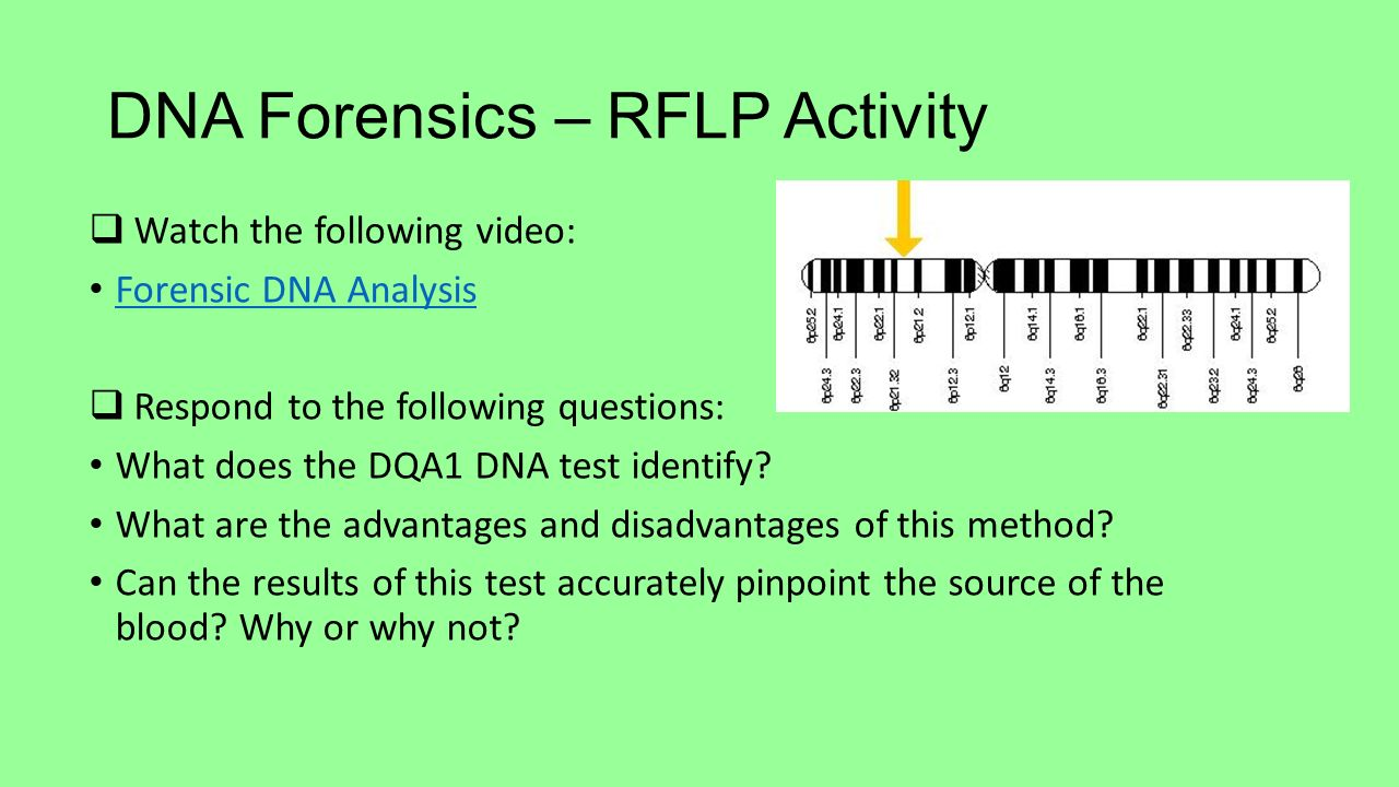 unit 2 forensics review questions A review of restriction enzymes  2) develop an  develop the curiosity and confidence to further explore questions and issues involving.