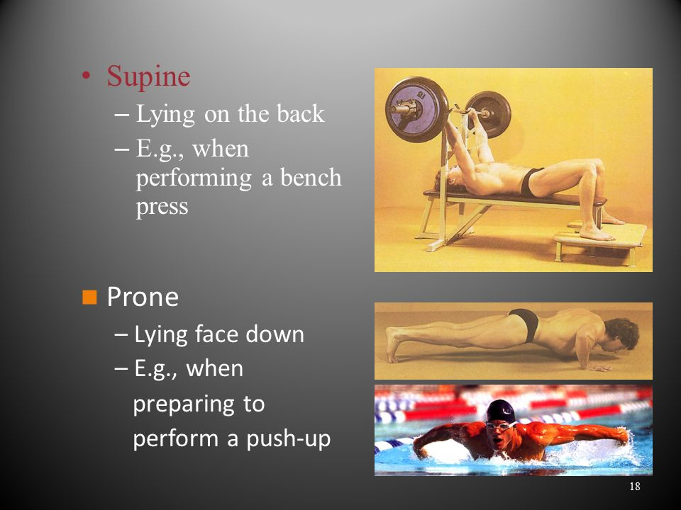 Supine Prone Lying on the back E.g., when performing a bench press