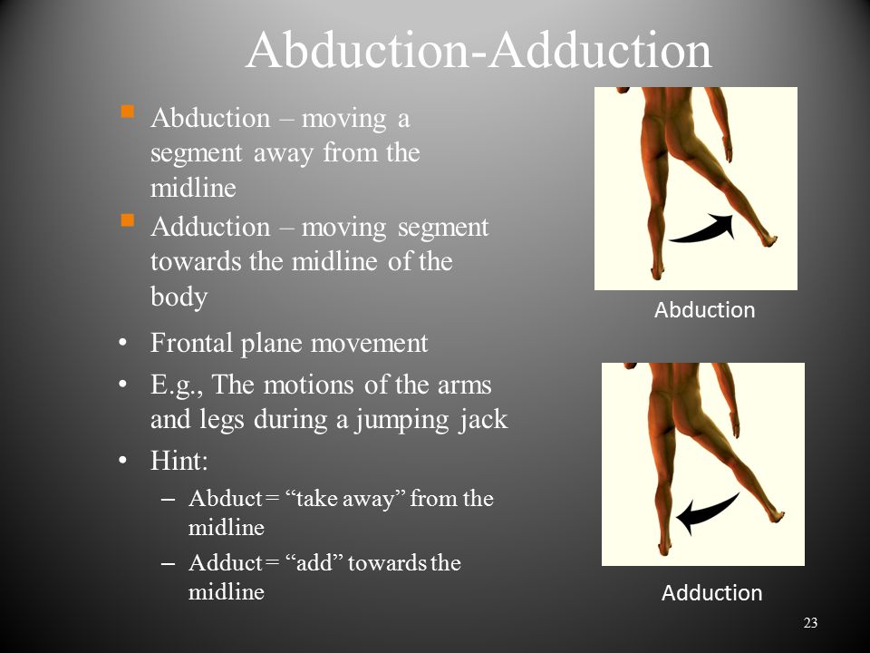 Abduction-Adduction Abduction – moving a segment away from the midline