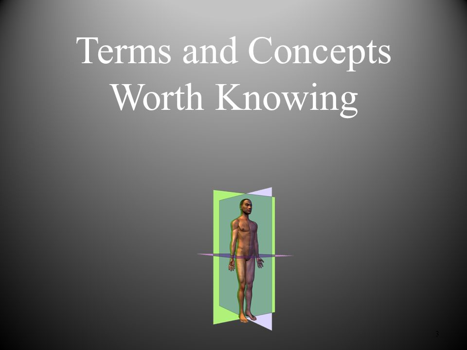 Terms and Concepts Worth Knowing