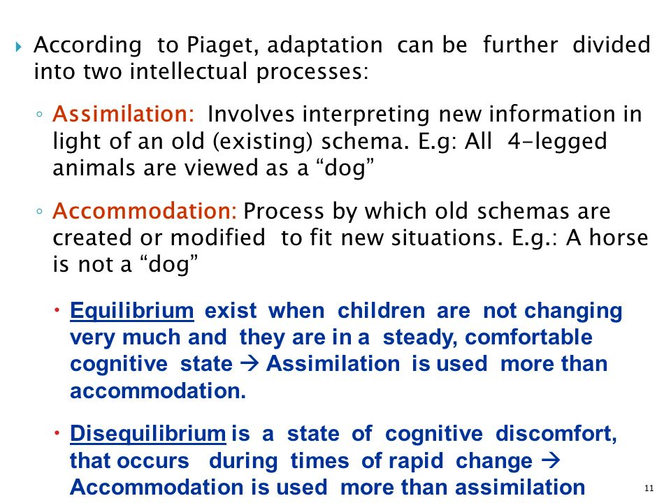 accommodation and assimilation two processes that Accommodation and assimilation: two processes that influence how a child will adapt to its environment.