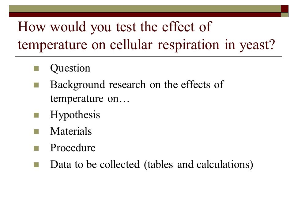 The Effect of Temperature on the Rate of Yeast Respiration Essay