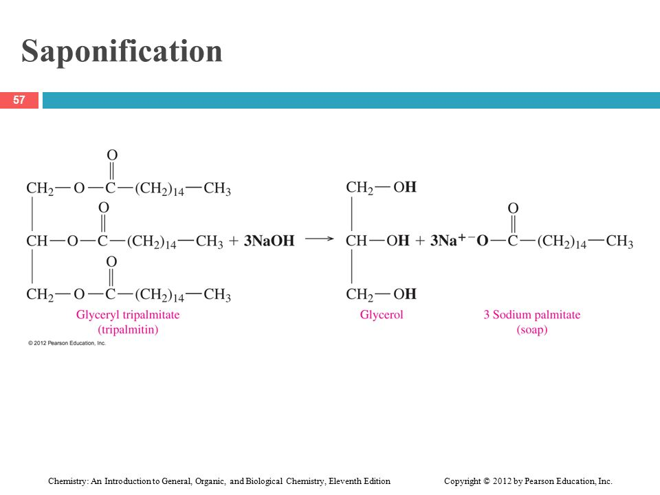 Write an equation for the hydrogenation of glyceryl trilinoleate