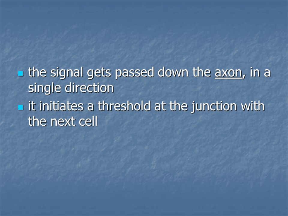 the signal gets passed down the axon, in a single direction