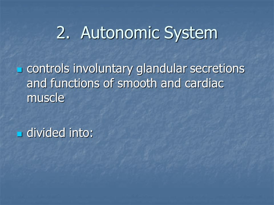 2. Autonomic System controls involuntary glandular secretions and functions of smooth and cardiac muscle.