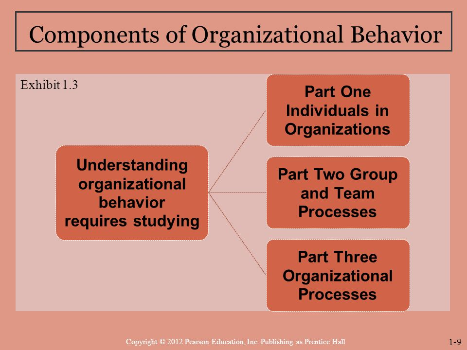 the context of organizational behaviour issues business essay On the other hand, decentralization is a systematic delegation of authority at all levels of management and in all of the organization in a decentralization concern, authority in retained by the top management for taking major decisions and framing policies concerning the whole concern.