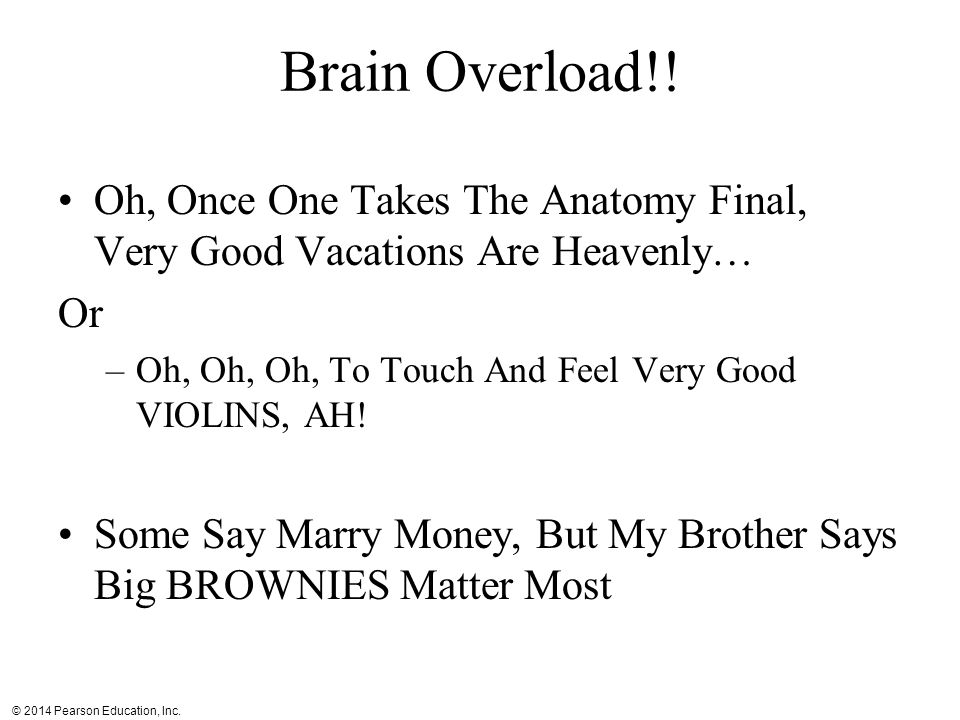 Brain Overload!! Oh, Once One Takes The Anatomy Final, Very Good Vacations Are Heavenly… Or. Oh, Oh, Oh, To Touch And Feel Very Good VIOLINS, AH!