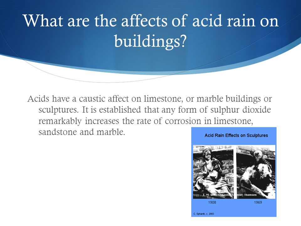 research question on effects of acid rain Answer to maria asked the research question what is acid rain she found a one-paragraph answer to her question on the first web site she visited what.