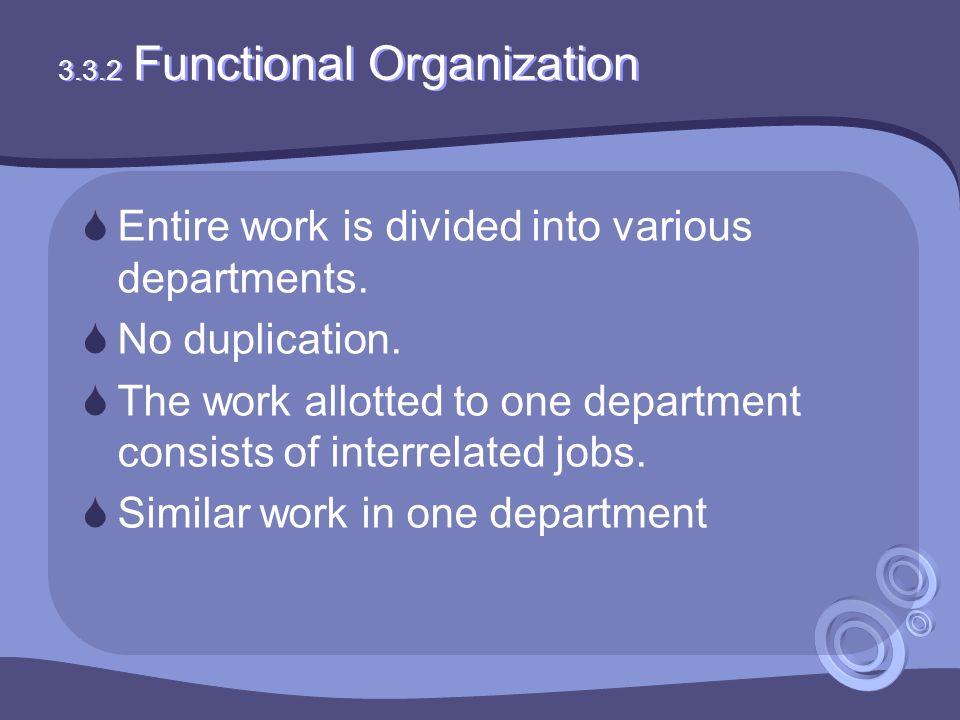 3.3.2 Functional Organization
