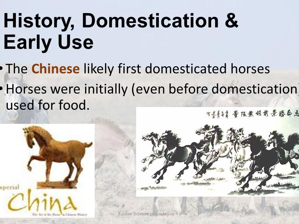 History, Domestication & Early Use