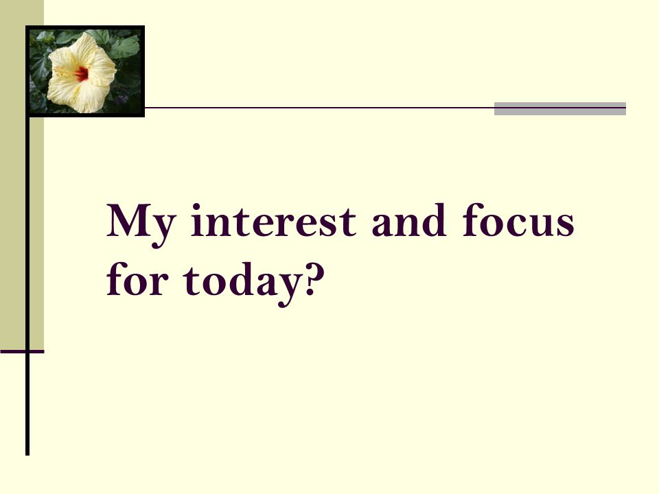 My interest and focus for today