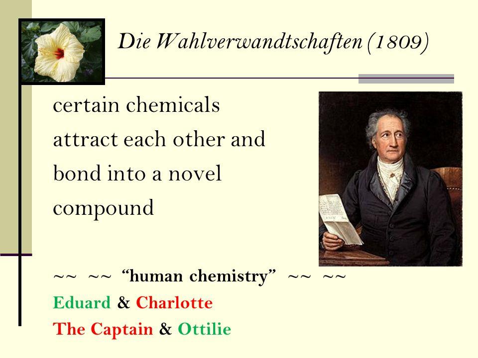 Die Wahlverwandtschaften (1809)