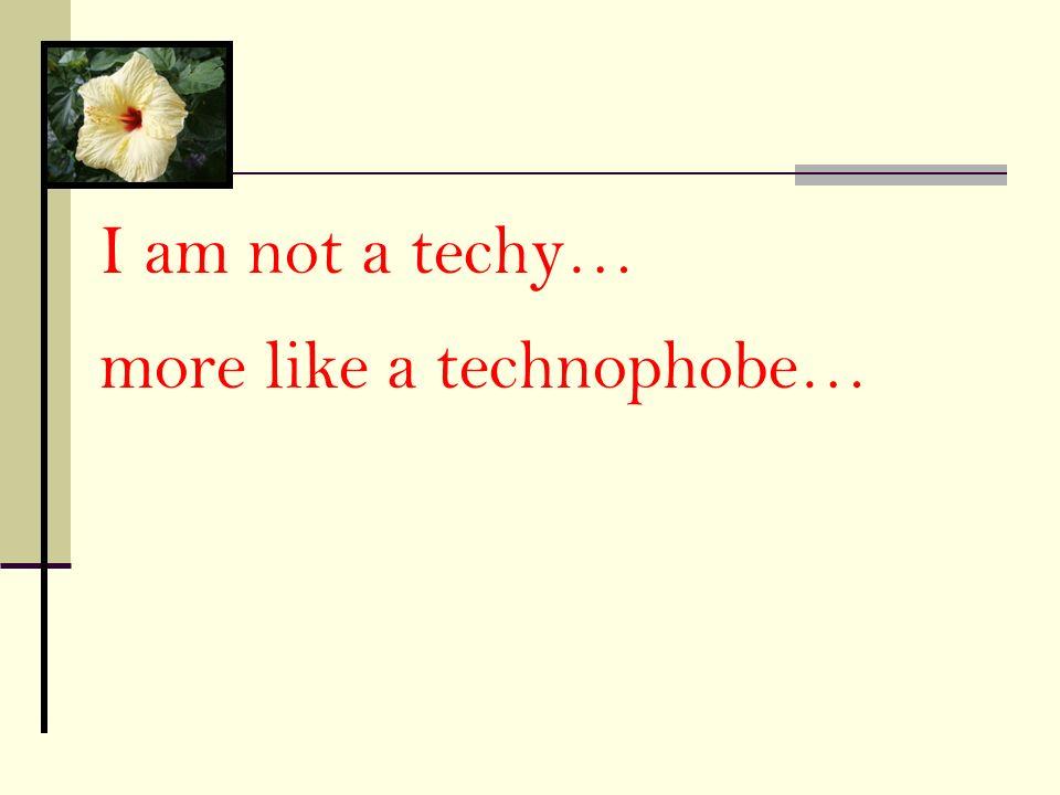 I am not a techy… more like a technophobe…
