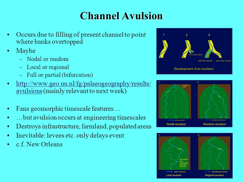 Channel Avulsion Occurs due to filling of present channel to point where banks overtopped. Maybe. Nodal or random.