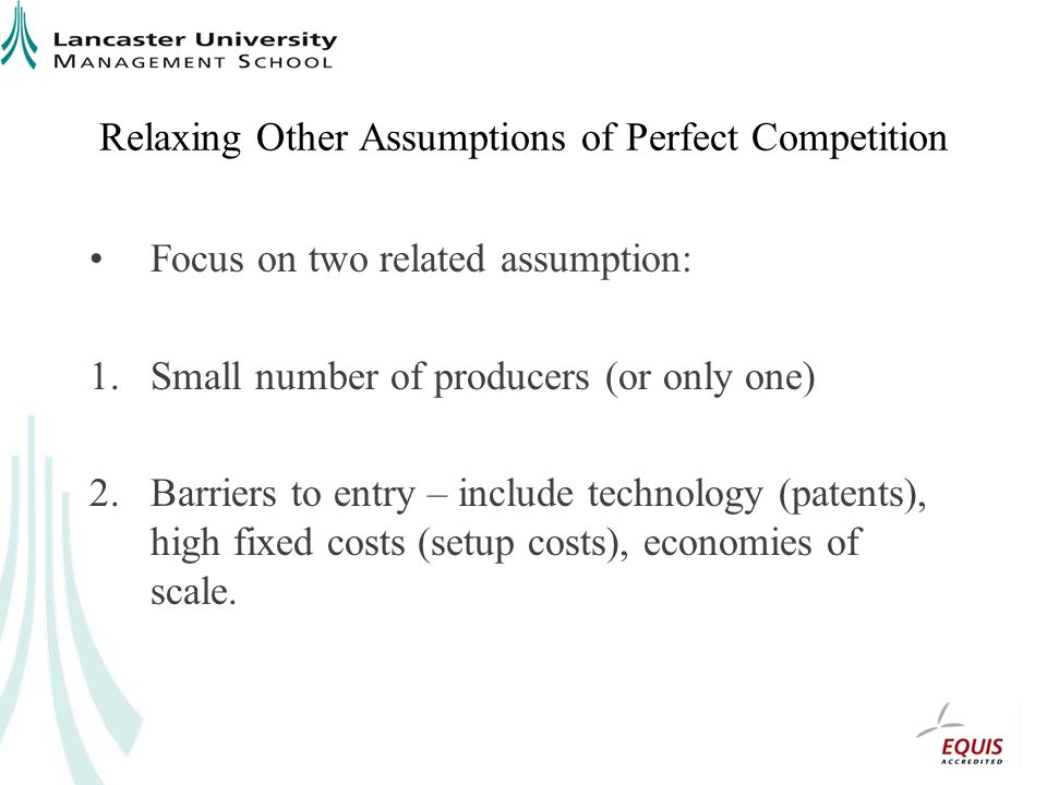 Relaxing Other Assumptions of Perfect Competition