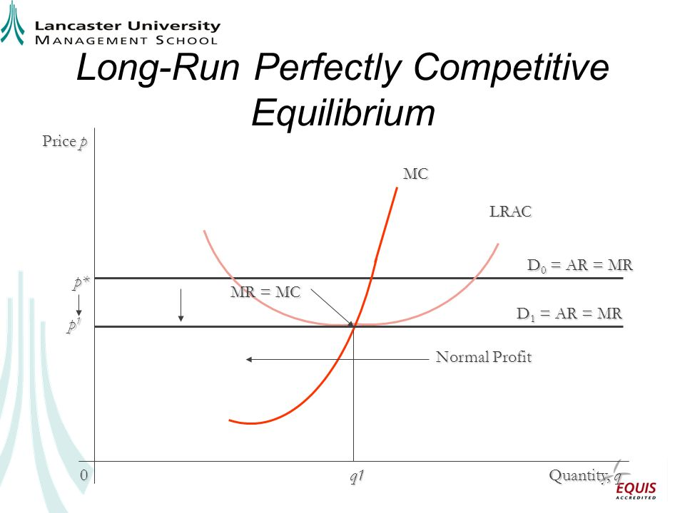 Long-Run Perfectly Competitive Equilibrium