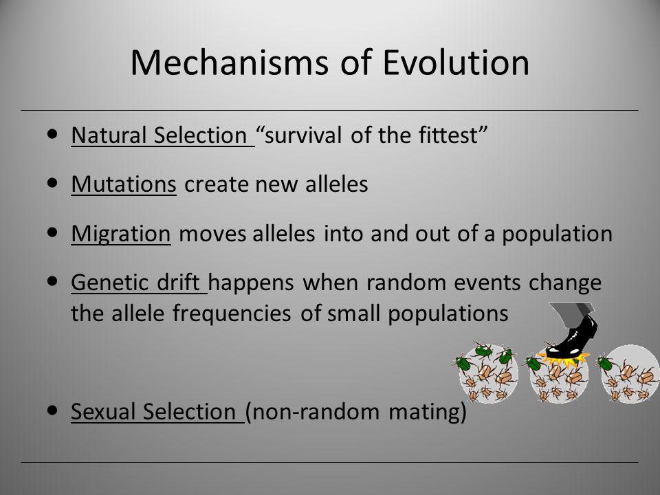 Natural Selection Mating