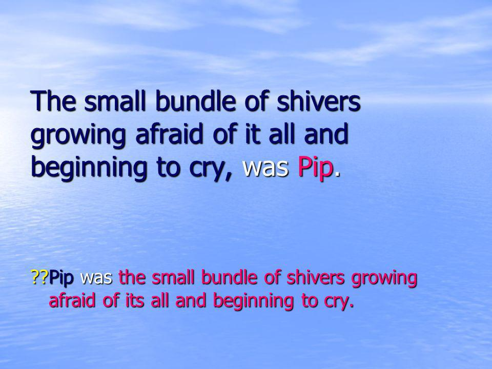 The small bundle of shivers growing afraid of it all and beginning to cry, was Pip.