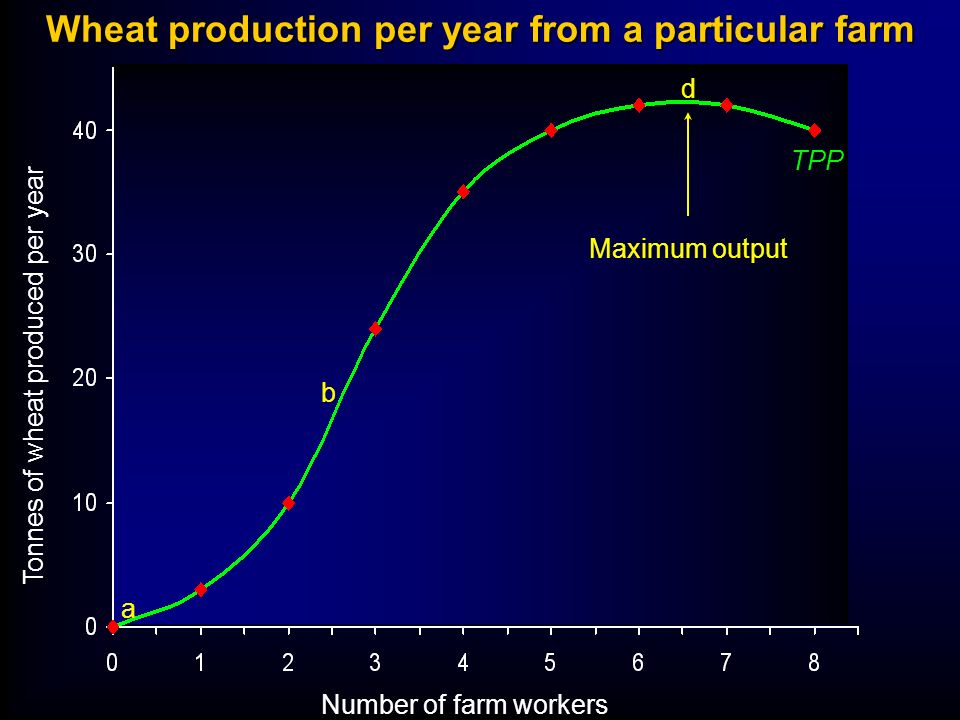 Wheat production per year from a particular farm