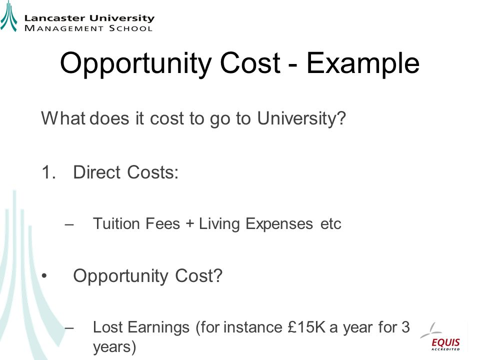 Opportunity Cost - Example