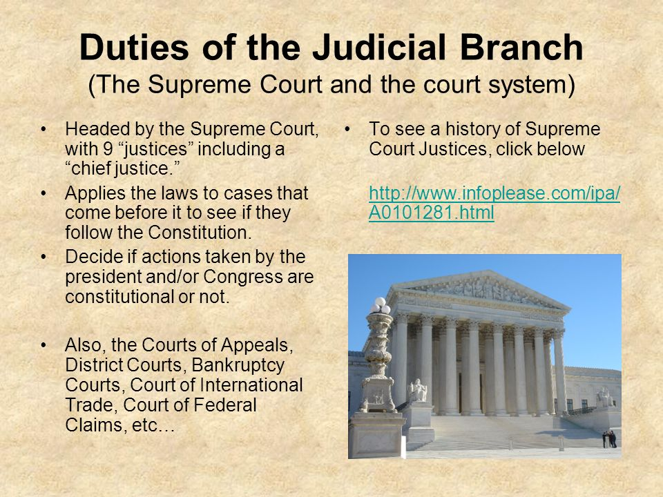 judicial review and the role of the court system
