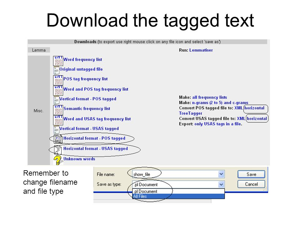 Download the tagged text