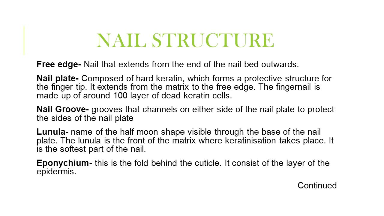 Work in a nail service framework! - ppt download