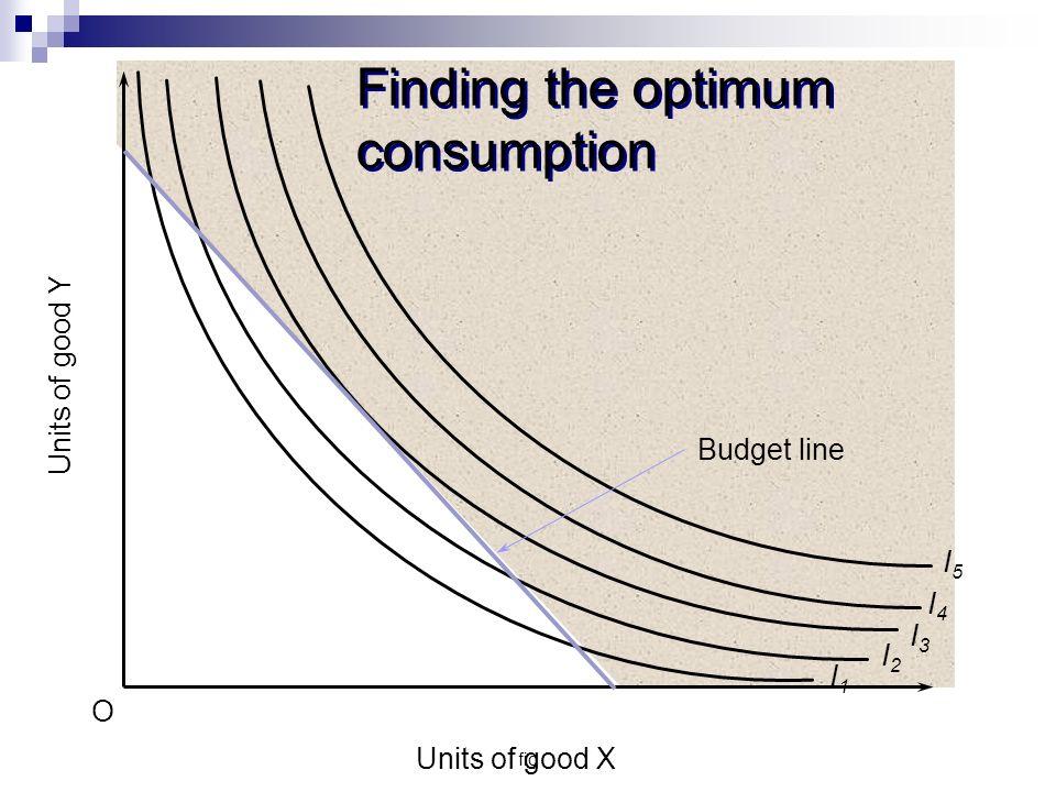 Finding the optimum consumption