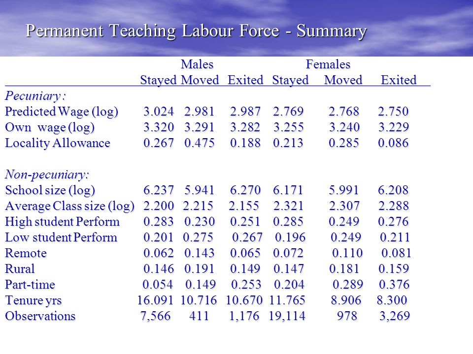 Permanent Teaching Labour Force - Summary