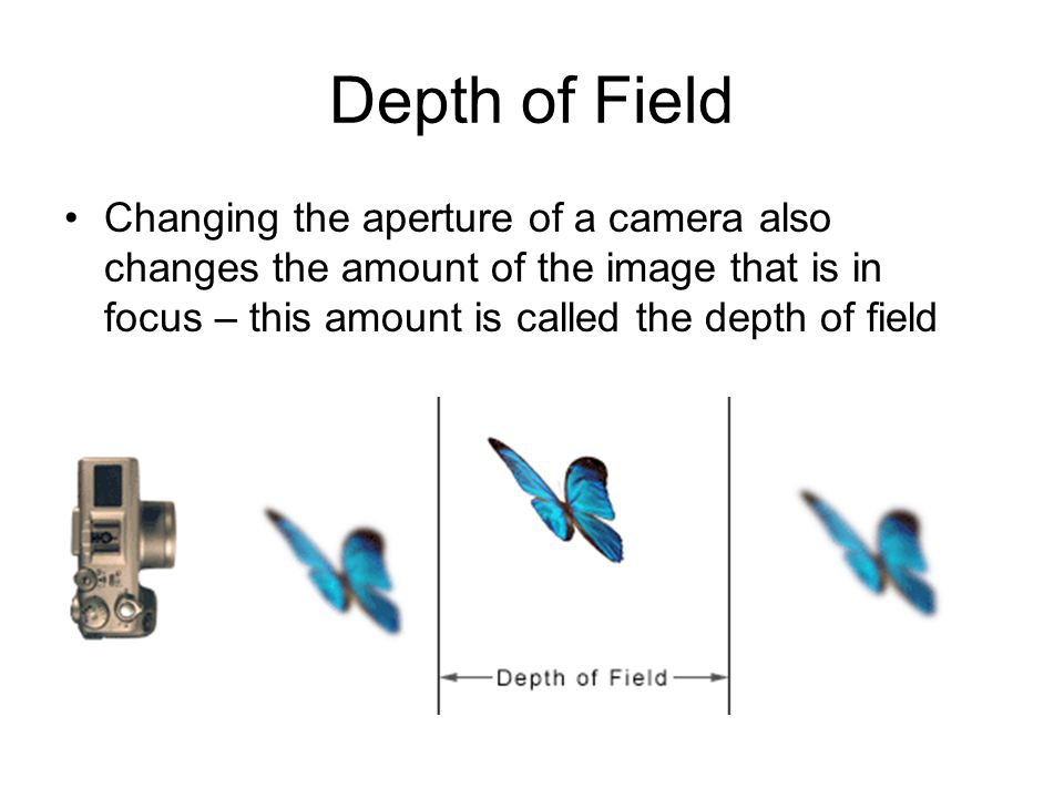 Depth of Field Changing the aperture of a camera also changes the amount of the image that is in focus – this amount is called the depth of field.