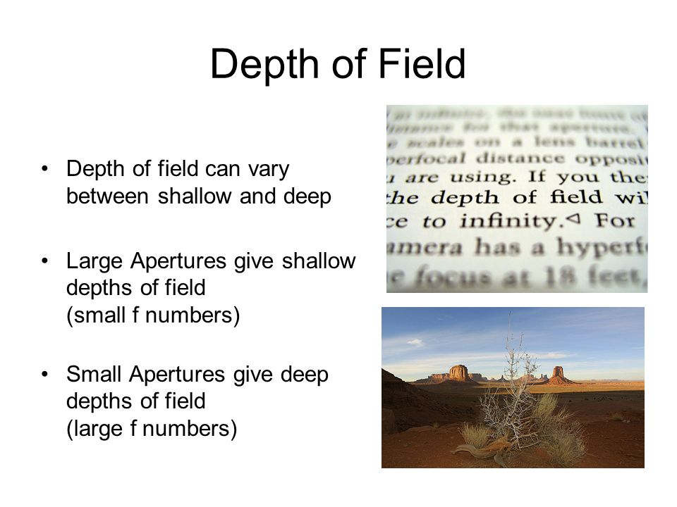 Depth of Field Depth of field can vary between shallow and deep