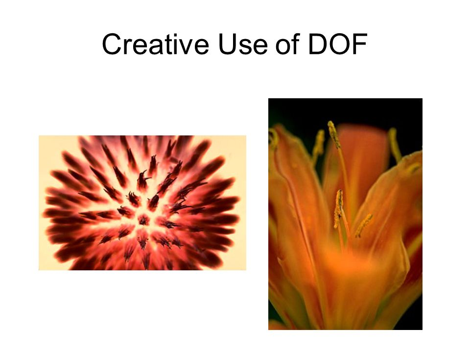 Creative Use of DOF