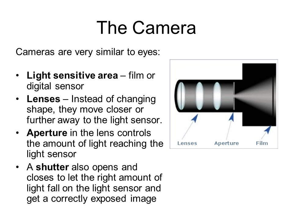 The Camera Cameras are very similar to eyes: