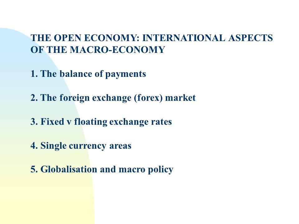 THE OPEN ECONOMY: INTERNATIONAL ASPECTS