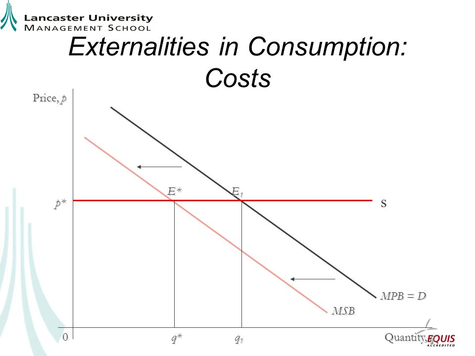 Externalities in Consumption: Costs