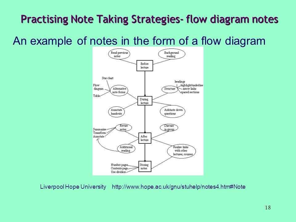 Practising Note Taking Strategies- flow diagram notes