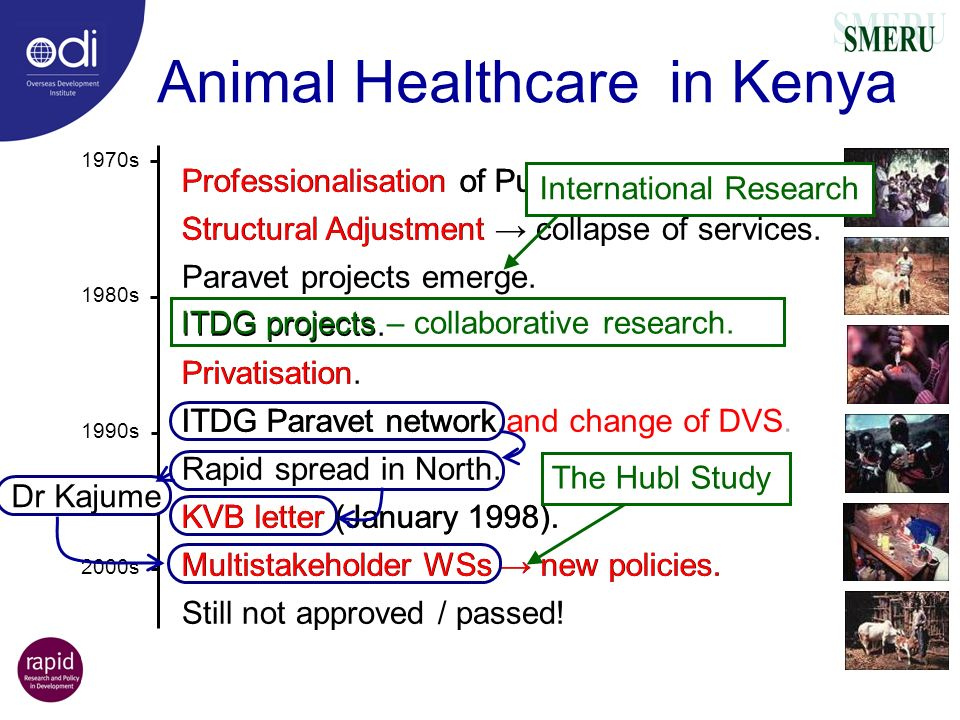 Animal Healthcare in Kenya